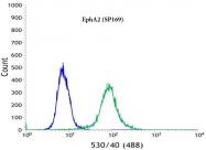 AM32431PU-N - EPHA2 / ECK