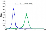 AM33229PU-S - Aurora kinase A/B/C