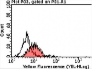 AM39092PU-N - CD111 / Nectin 1