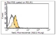 AM39122PU-N - CD262 / TRAILR2