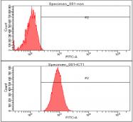 AM50048PU-N - ICT1 / DS1