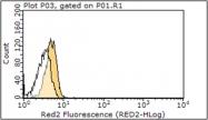 AM50491PU-N - CD282 / TLR2