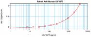 AP01109PU-S - IGFBP7