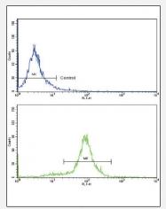 AP17190PU-N - MCP1 / CCL2