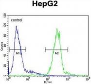 AP17259PU-N - Cathepsin H