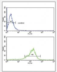 AP18219PU-N - Thrombospondin-1 (THBS1)