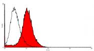 AP31728PU-L - CD202b / TEK