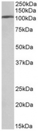 AP32069PU-N - AP2A1 / ADTAA