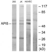 AP32280PU-N - API5 / MIG8