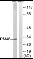 AP32288PU-N - MRPL46