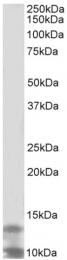 AP32702PU-N - DPM3