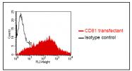 AP32979PU-N - CD81 / TAPA1