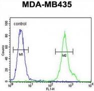 AP50840PU-N - CD1e