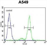AP50843PU-N - CEP164