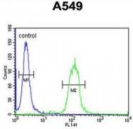 AP50979PU-N - Apolipoprotein J / Apo J