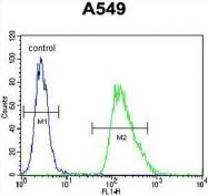 AP50981PU-N - Chromogranin A