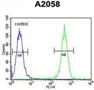 AP51010PU-N - Collagen type XVII alpha 1 chain