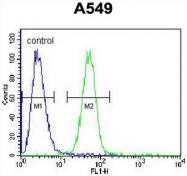 AP51022PU-N - CARD16 / COP1