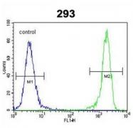 AP51213PU-N - GADD153 / CHOP