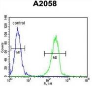 AP51435PU-N - ENTHD1