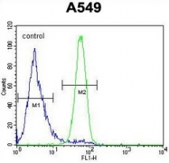 AP51731PU-N - Follistatin-related protein 1