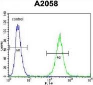 AP51754PU-N - GAB4