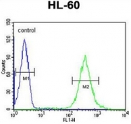 AP51807PU-N - Guanine deaminase