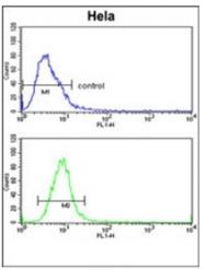AP51865PU-N - Glypican-1 / GPC1
