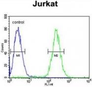 AP51875PU-N - Transducin alpha-1 chain / GNAT1