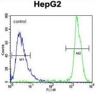 AP51899PU-N - GPAM / GPAT1