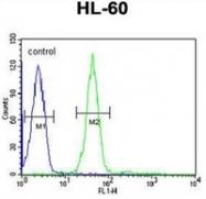 AP51959PU-N - Gastrin-releasing peptide receptor
