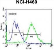 AP51963PU-N - Glutathione reductase