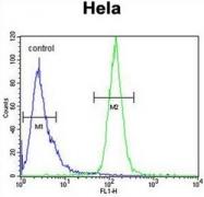 AP51990PU-N - H2AFY2 / MACROH2A2