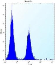 AP52039PU-N - KAT2A / GCN5L2