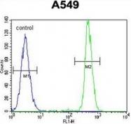 AP52065PU-N - HN1 / ARM2