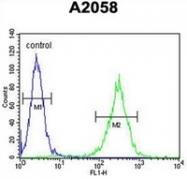 AP52110PU-N - 17-beta-HSD12 / HSD17B12