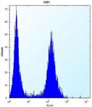 AP52144PU-N - ID1 / BHLHB24
