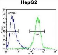 AP52166PU-N - IGF2BP2