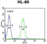 AP52168PU-N - IGHG1