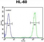 AP52255PU-N - ITIH1 / IGHEP1