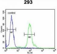 AP52377PU-N - KLC2