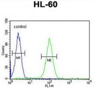 AP52510PU-N - LNPEP