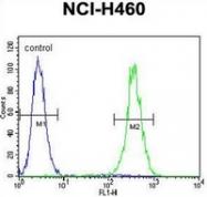 AP52534PU-N - LRRC38