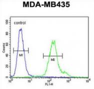AP52772PU-N - Metaxin-2