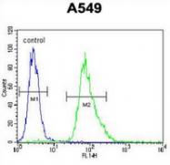 AP52784PU-N - MYBPHL