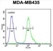 AP52787PU-N - MYCT1