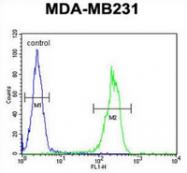 AP52802PU-N - MYSM1