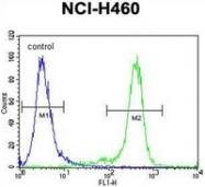 AP52817PU-N - Nibrin