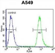 AP52855PU-N - Sialidase-2