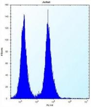 AP53016PU-N - Olfactory receptor 11L1